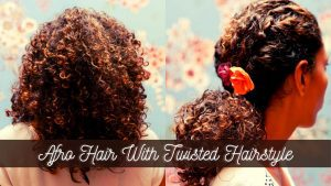 Afro Hair With Twisted Hairstyle
